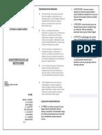 DIPTICO CARACTERISTICAS DE LAS INSTITUCIONES.docx