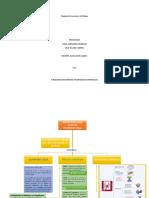 CALCULO VECTORIAL MAPA EN PROCESO
