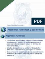 Sesión 10 - Algoritmos numéricos y geométricos.pdf