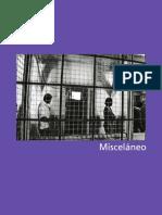 La vinculación entre geopolítica y seguridad.pdf