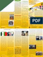 Bulletin_n1_final.pdf