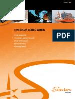 panorama-fcw-en-v2.pdf