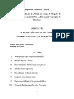 MODULO III. PROCESO LABORAL DIPLOMADO -Resumen