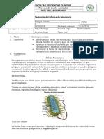 Celulas Procariotas, Biologia Doc General