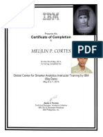 IBM Training Certificate BIG DATA