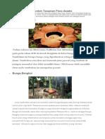 Contoh Tanaman Flora Asiatis edit