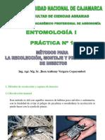 PRÁCTICA N° 1.pdf