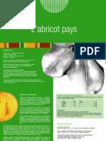 Page Abricot