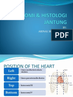 Anatomi & Histologi Jantung Ina