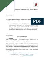 Control II - Diplomado Penal - CASTRO CORONADO