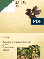 procesos del cacao.pptx