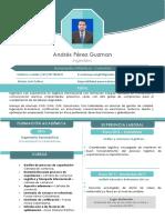 Hoja de vida Andres Perez.pdf