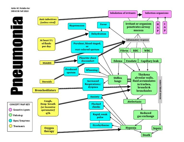 Pneumonia Concept Mapkpoindexter Clinical Medicine Respiratory