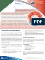 myp-brief-interdisciplinary-2016-es.pdf