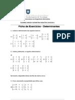 ficha_exercicios_determinantes