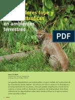di_bitetti_2008___depredadores_tope_y_cascadas_tr_ficas_en_ambientes_terrestres_oco_art.pdf