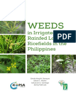 weeds-in-irrigated-and-rainfed-lowland-ricefields