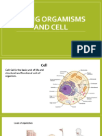 living organism and cell