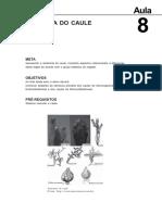 18060016022012Morfologia_Interna_e_Externa_dos_Vegetais_Aula_8(1)