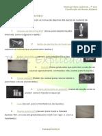 B.1.1  –  Constituição do mundo material - Ficha Informativa