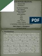 Timah di Bangka Belitung