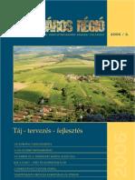 FALU VÁROS RÉGIÓ 2006_3[1]