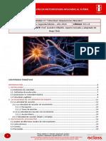 Fundamentos 13 - Velocidad Adaptaciones Neurales