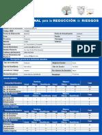 EJEMPLO ELABORACIÓN PIRR 2019-2020