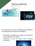 Defensas orgánicas.pptx