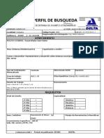 Planilla Perfil BUSQUEDA 2019