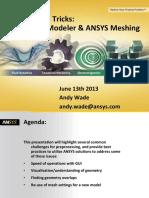 Tips and Tricks_ Design Modeler & ANSYS Meshing.pdf