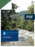 reporte-alto-mayo-basin
