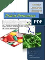 Revista-Procesos Superiores