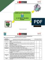 Curriculo de Emergencia Lluvias Ricardo Palma_2019