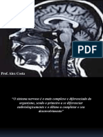 ANATOMOFISIOLOGIA DO SNC (1)