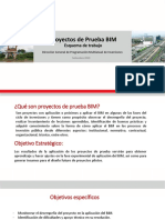 ProyectosdePrueba_BIM.pdf