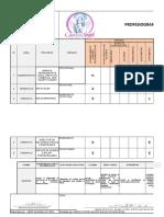 PROFESIOGRAMA CABELLOS DE ANGEL 2020 (1).xlsx