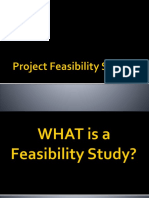Project Feasibility Studies