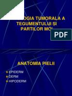 4. PATOLOGIA TUMORALA A TEGUMENTULUI  SI PARTILOR MOI.ppt