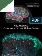 Neurociência_organização e funcionalidade.pdf