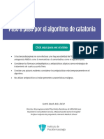 PDF - Paso a paso por el algoritmo de catatonia