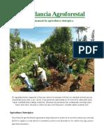 Abundancia_agroforestal_sintropica