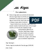 Las Algas.docx