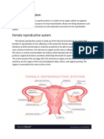 Reproductive sy-WPS Office