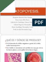 Equipo 7 Hematopoyesis ENF02A 20-2