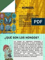 """Equipo 3 """"Hongos"""" FTP20A 20-2"""
