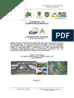 Informe Proyecto PLEC_Estudio Hidrológico, Hidráulico y Socavamiento (1)