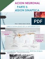 Teorico Sinapsis 2019