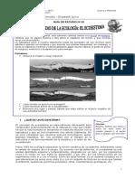 Guía de estudio N° 02