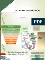 Biologia celular bioquímica  Clases 1 2020-1.pdf